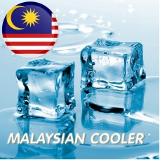 NEW Малайзийский кулер WS23 20%
